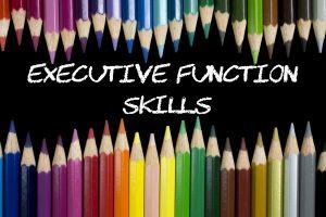 Executive life skills